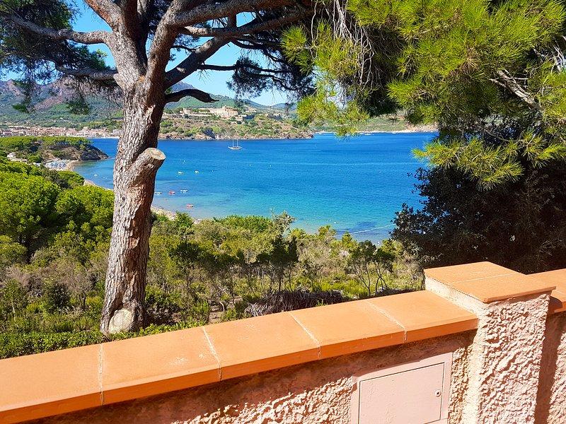 'Casa Anna 2 Apartment' - Capoliveri, Isola d'Elba (a 200 mt dal mare), holiday rental in Naregno