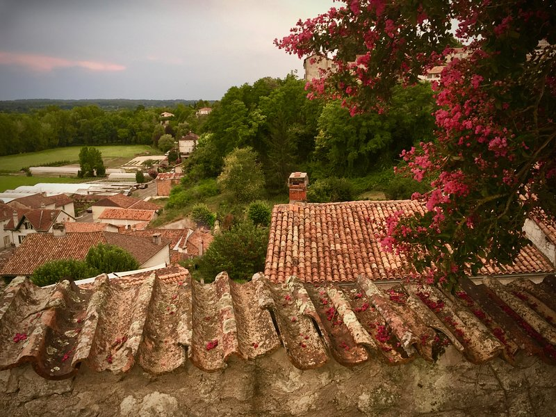 2 Bed Cottage in centre of Historic Aubeterre, holiday rental in Aubeterre-sur-Dronne