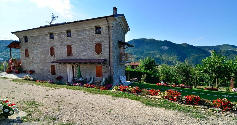 Villa Zacchi - Big Flat, vacation rental in Gropparello