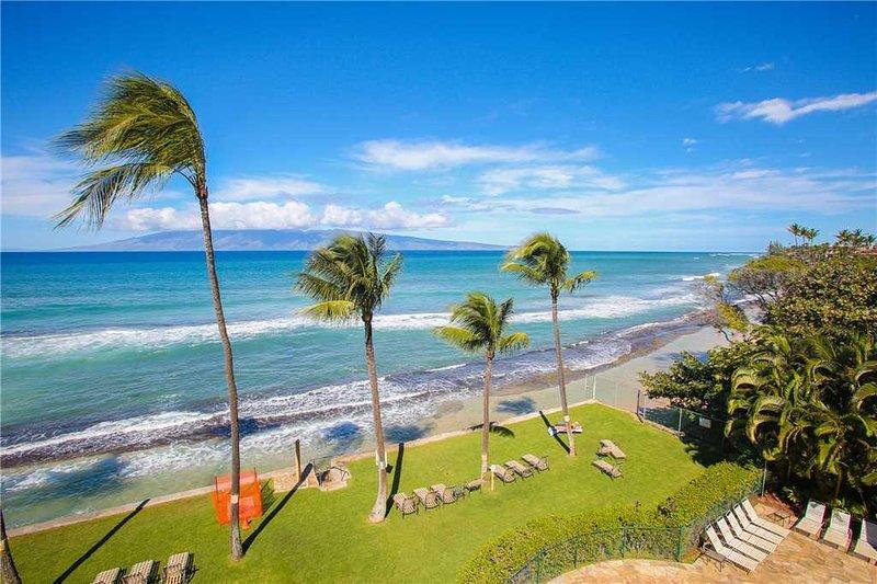 Paki Maui 422 - Image 0