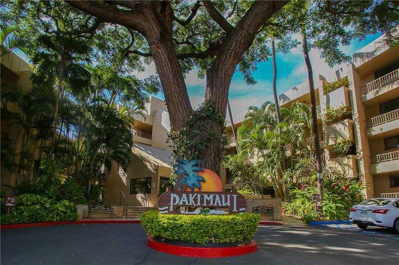 Paki Maui 422 - Image 39