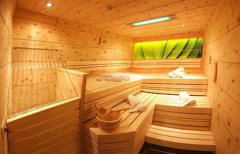 Apart Central: 3SZ FeWo mit privater Sauna und Garten, direkt am Schilift, holiday rental in Astegg