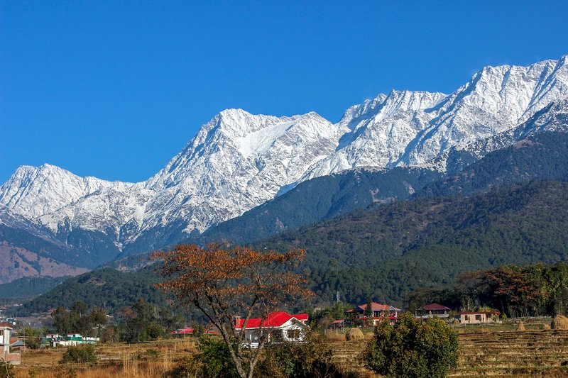 Wake up to snow kissed majestic Dhauladhar mountains during your stay at Pushpangan Ménage