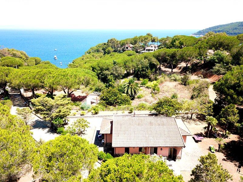 'Magnolia 1 Apartment' - Capoliveri, Isola d'Elba (a 200 mt dal mare), holiday rental in Naregno