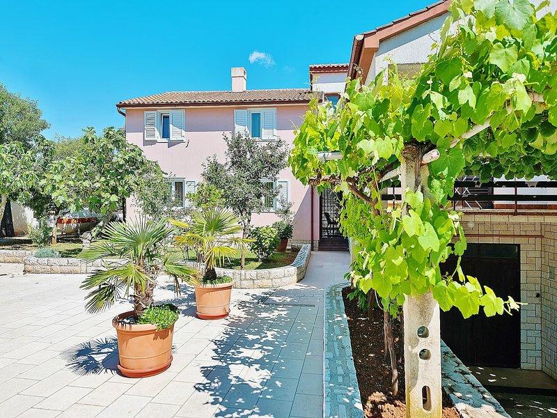 Outdoors,Tree,Pot,Garden,Vine