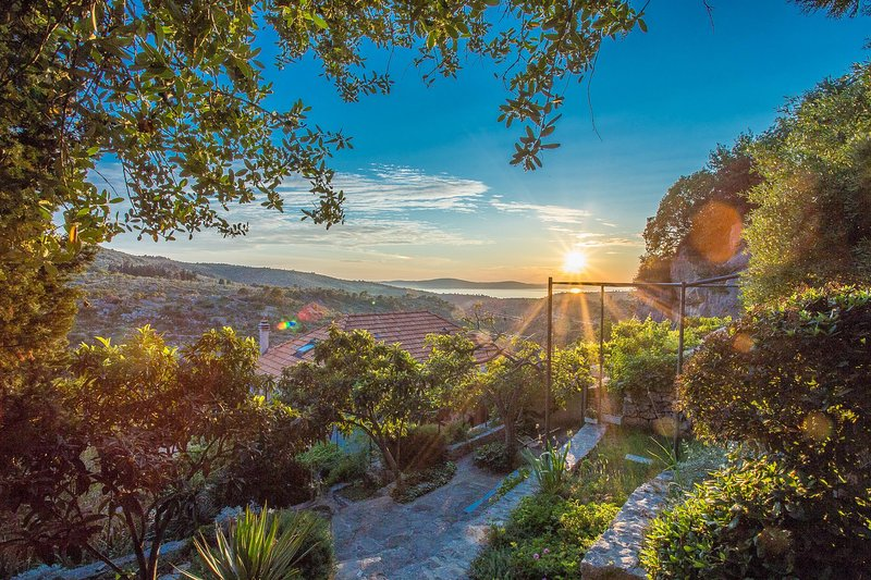 Outdoors,Nature,Sunlight,Scenery,Vegetation
