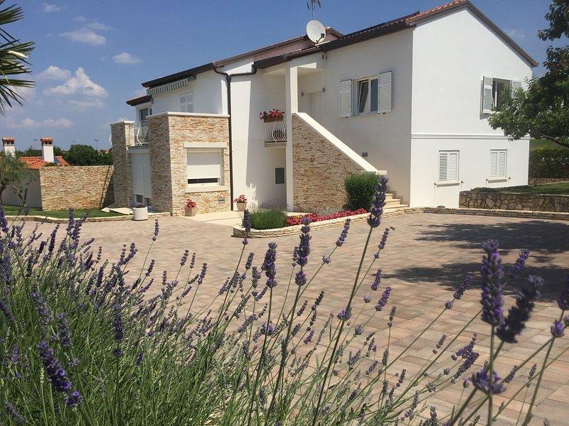Flagstone,Flower,Building,Lavender,Home Decor