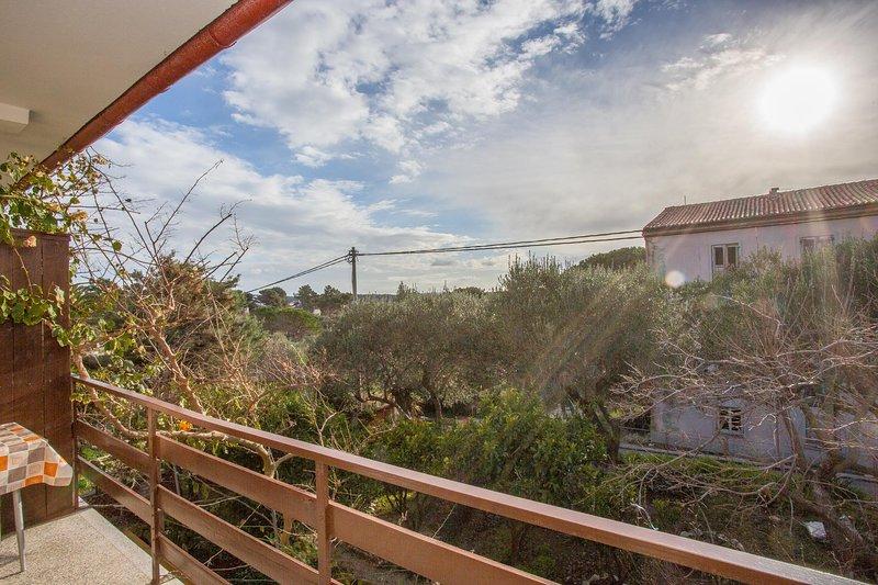 Banister,Handrail,Railing,Building,Outdoors