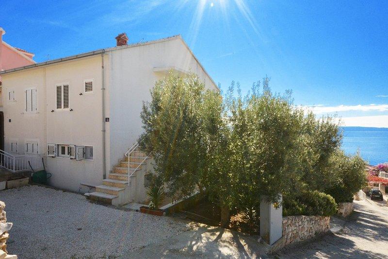 Handrail,Flagstone,Sunlight,Tree,Outdoors