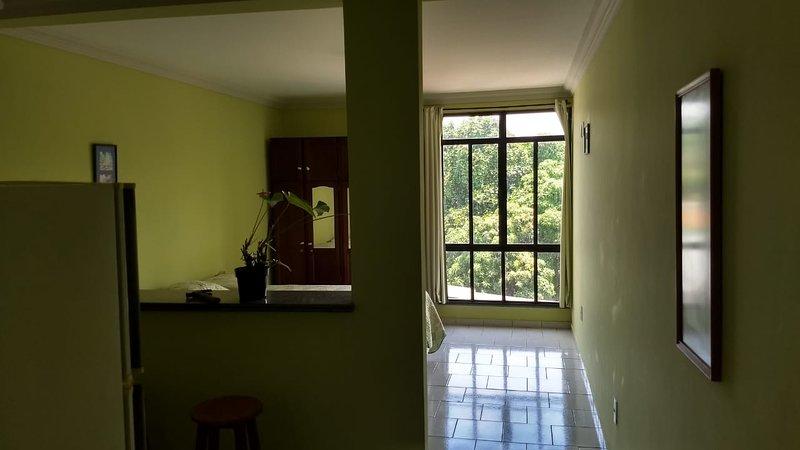 Apartamento no centro da cidade com vista para a montanha, vacation rental in Itatiaia