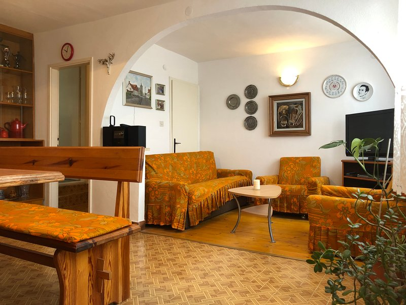 Apartments Vuka - Apartment C, vacation rental in Necujam