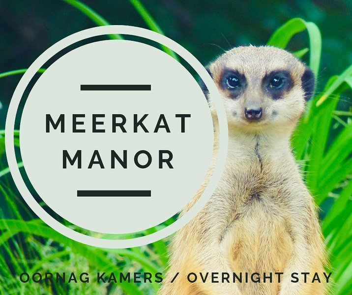 Shakespeare in Meerkat Manor, holiday rental in Northern Cape