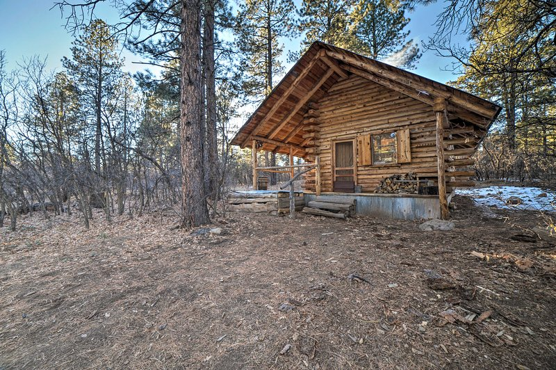 Secluded Cabin w/Fire Pit By San Juan Forest!, holiday rental in Lewis