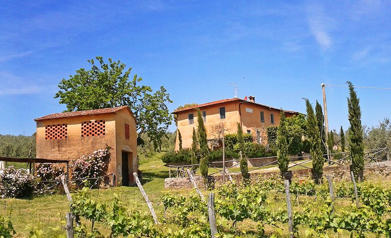 Feriale I, Petrolo winery. Quiet countryside, garden, swimming-pool, wi-fi., holiday rental in Mercatale Valdarno