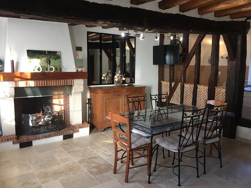 Gîte en Sologne au coeur des Châteaux de la Loire, entre Chambord et Cheverny, holiday rental in Mont-pres-Chambord