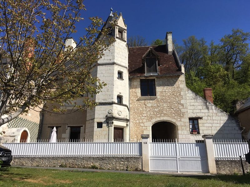 Manoir des Roches Troglo B&B, holiday rental in Bourre