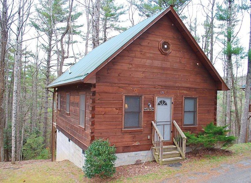 Watson Log Cabin-Cozy, Hiking Nearby,Blue Ridge Parkway, Sightseeing, holiday rental in Hays