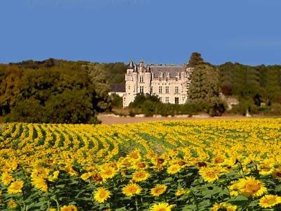 Grand Fond chateau a short walk away.