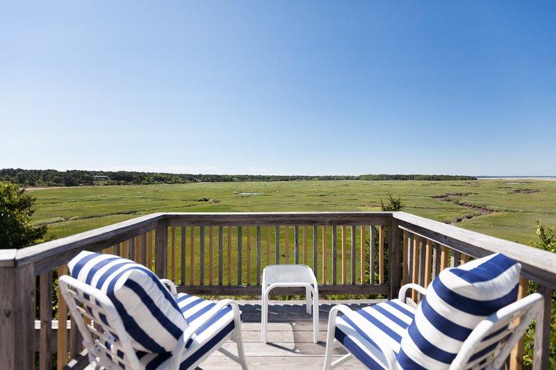 Mooi, uitgestrekt uitzicht over het moeras naar Cape Cod Bay