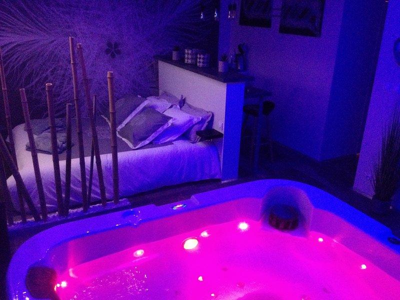 Chambre spa, location de vacances à Sanvignes-les-Mines