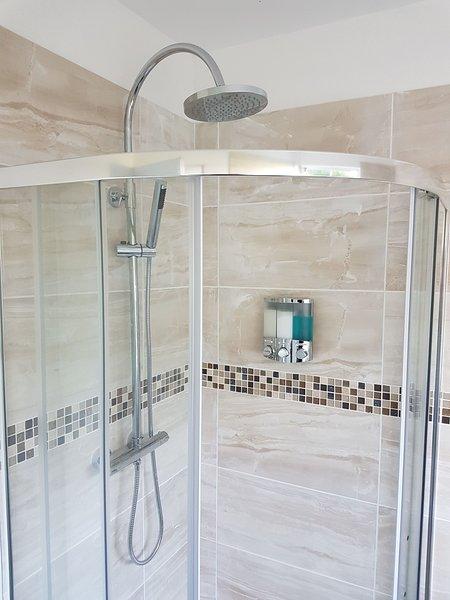 Doccia al piano inferiore con servizi igienici e lavabo