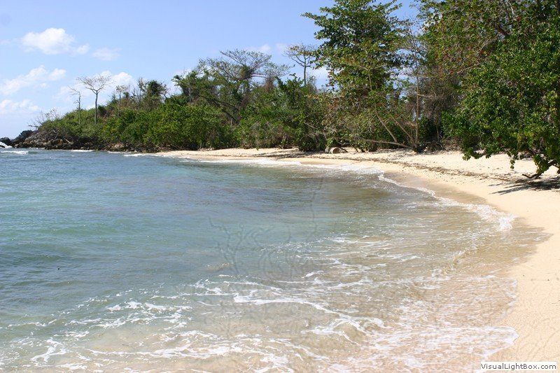 Strand vid Little Bay