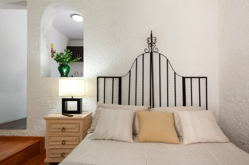 SUITE 2C, CALANDRIAS, Welcome to Garden House in San Angel, vacation rental in Mexico City