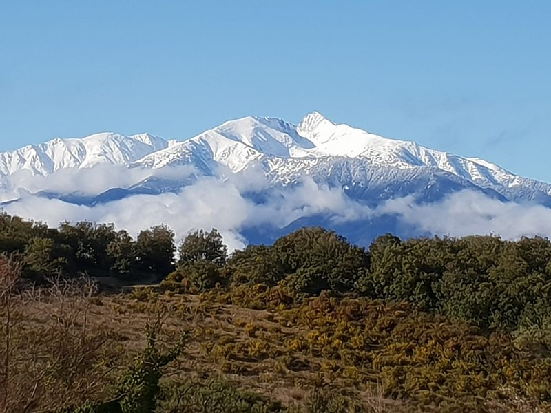 Our Canigou, sacred mountain of Catalans, from the terrace of our House Honeysuckle