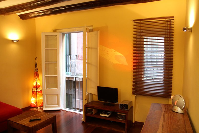 Apartment Ramblas/Plaza Catalunya - Wi-Fi 300 Mbps, holiday rental in Barcelona