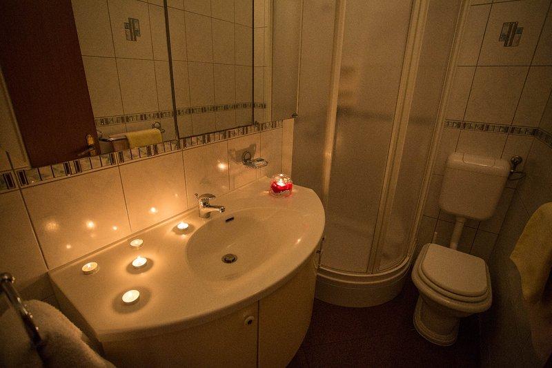 A2 Earth(2+1): bathroom with toilet