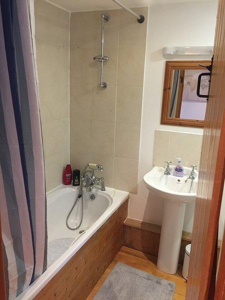 bathroom with shower attachement