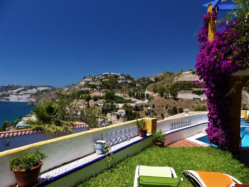 Terraza, jardin y piscina