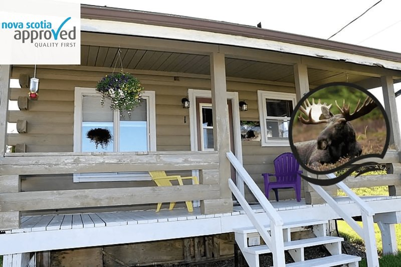 Elch - Grand River Ferienhaus, holiday rental in Grand River
