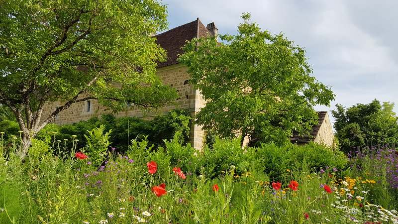 Gîte Dordogne, with pool & jacuzzi, holiday rental in Grolejac