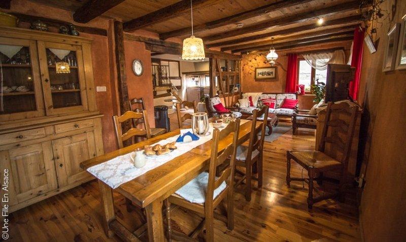 Cocon du potier - Merveilleux gite sur la route des vins d'Alsace, vacation rental in Ebersmunster