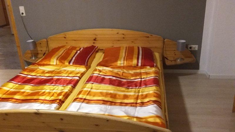 Pension Druschke Apartment1, vacation rental in Luebbenau