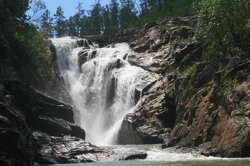 Siamo a meno di mezz'ora da Big Rock Falls a Mountain Pine Ridge e chilometri di sentieri escursionistici