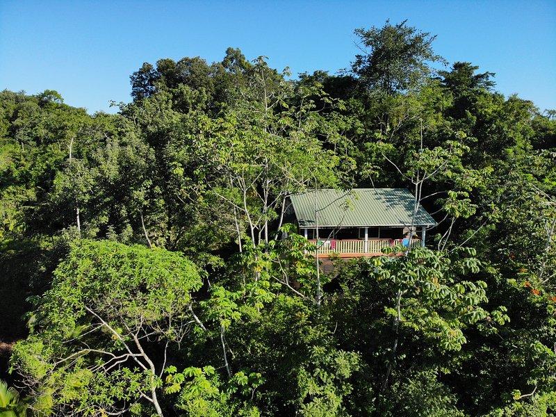La pensione si trova su una collina boscosa ai piedi delle montagne Maya