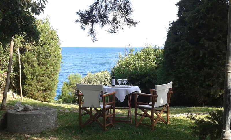 Villa Ilida,access to sea, balcony on the Ionian sea within an olivegrove, holiday rental in Korakochori