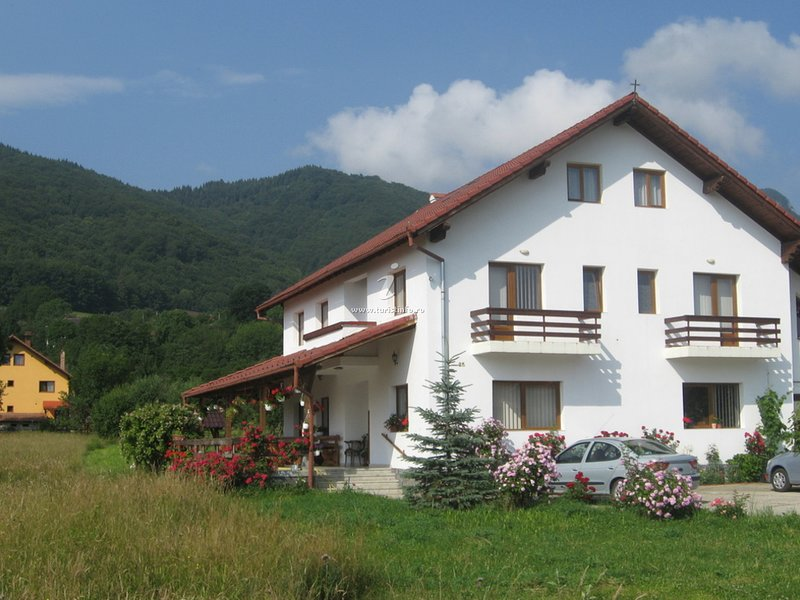 Casa cu Păuni Bran, holiday rental in Moieciu de Jos