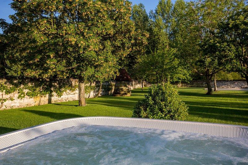 Ingrandes-de-Touraine Villa Sleeps 8 - 5771487, holiday rental in Rigny-Usse