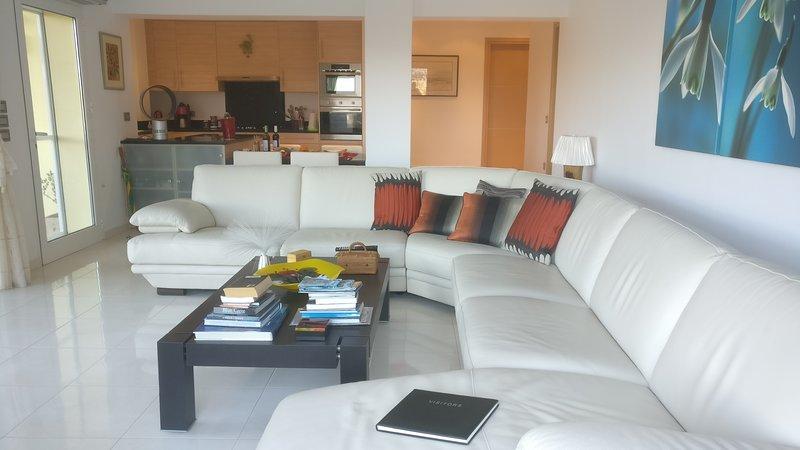 Anesti.Folia - adults only luxury apartment, holiday rental in Vatolakkos