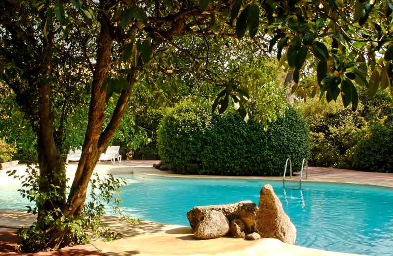 Shaddy pool