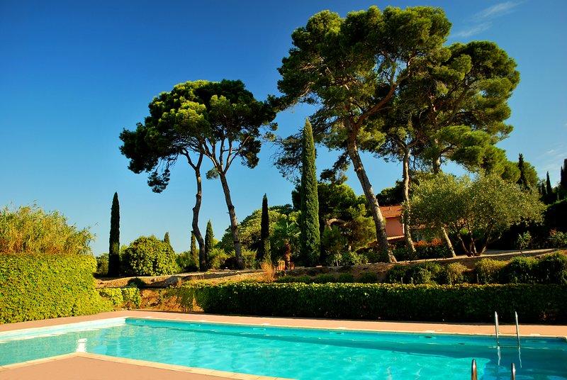 Open swimmin pool - all day long sun !