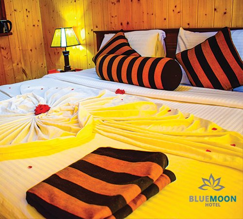 Blue moon Guest House, vacation rental in Dickoya