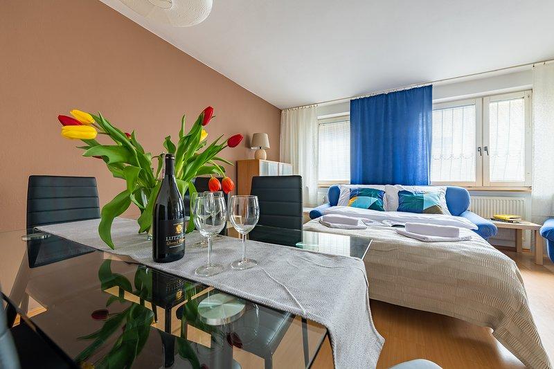 3 bed apartments - GOCLAW 2, location de vacances à Jozefow