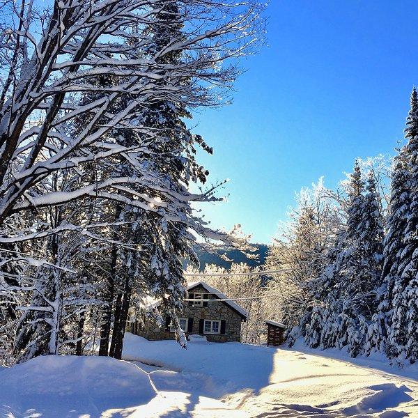 BOB's Chalet / Log Cabin, vacation rental in Val-des-Lacs