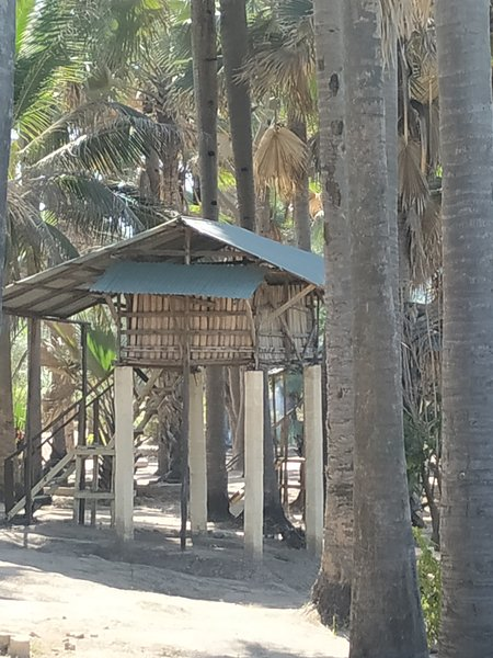 pure natur Treehouse 3Unspoiled atlanticview & Sound , 25 m. from ParadiseBeach, holiday rental in Kartong