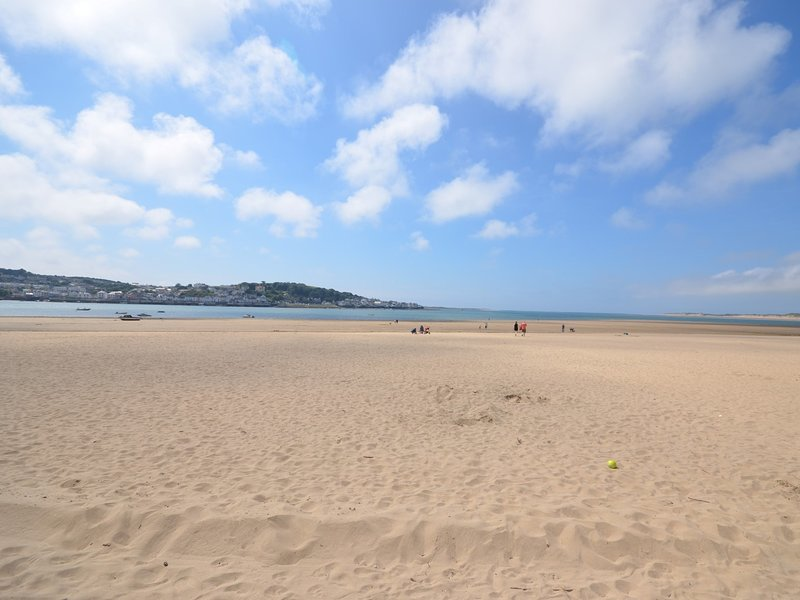 Dog friendly Instow beach (October - April)