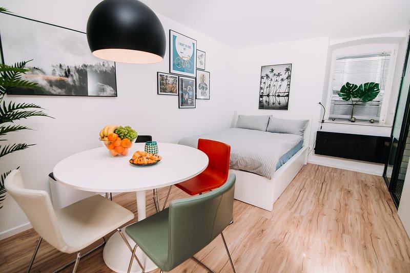 Hanna Studio, holiday rental in Domzale